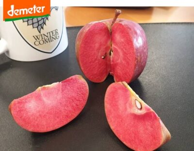 Red Moon Apples