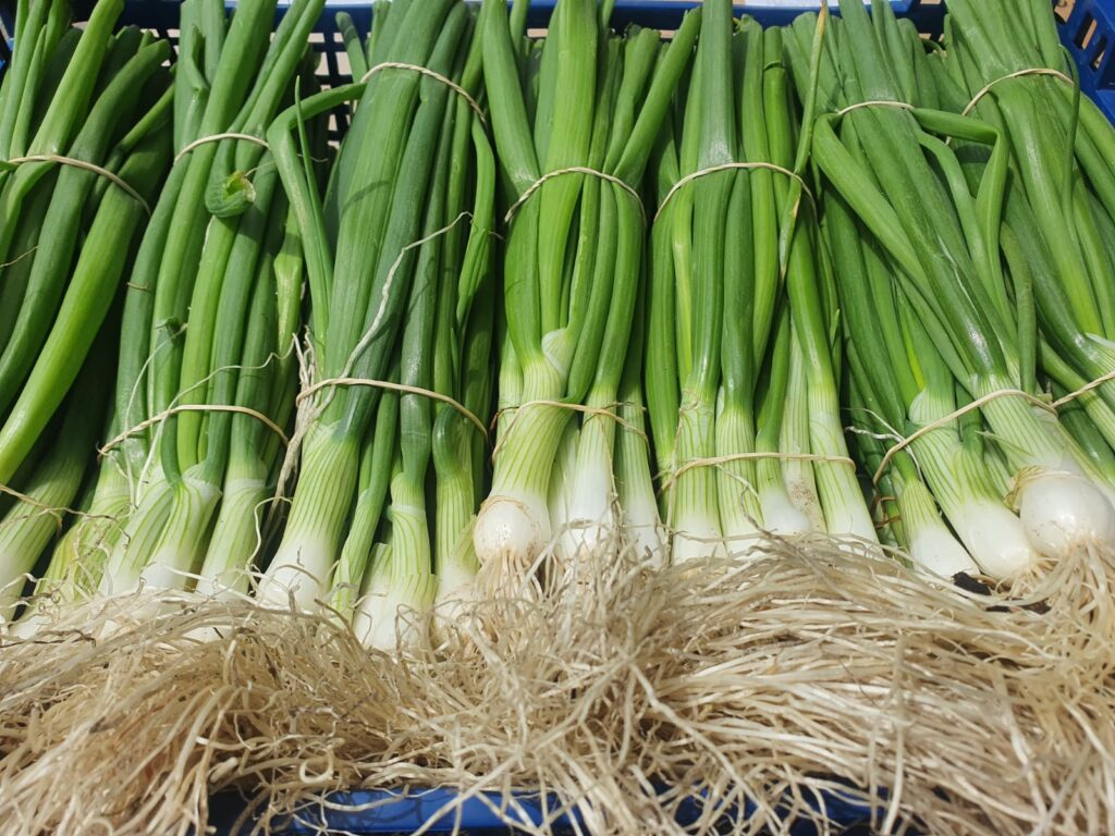 Spring Onions from Simpson